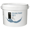 Pro-Ceiling-Paint-Iso-2